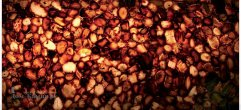 agat-carnelian-brown.1_f