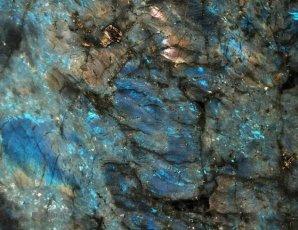 lemurian-blue_f